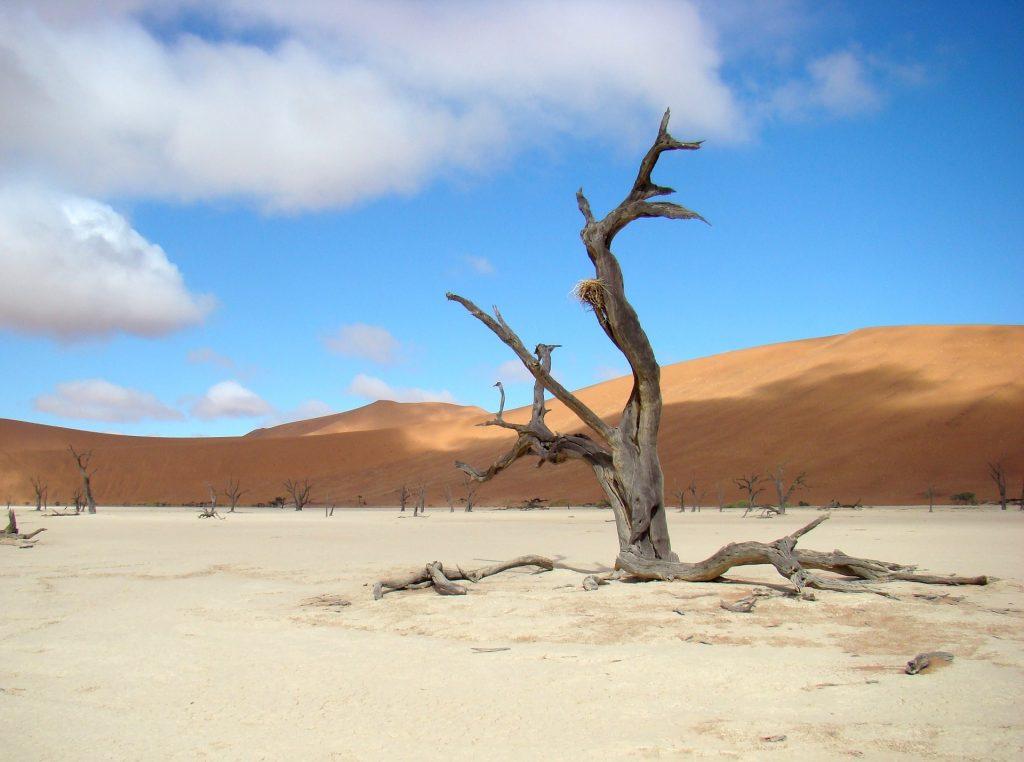 Namibia Dessert Tour