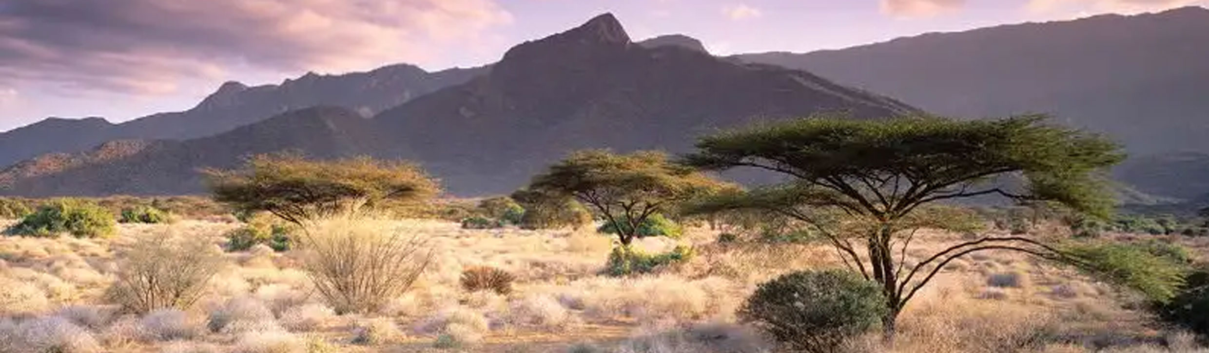 east-africa-tours-southern-african-tours