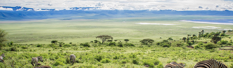 TANZANIA-TOURS