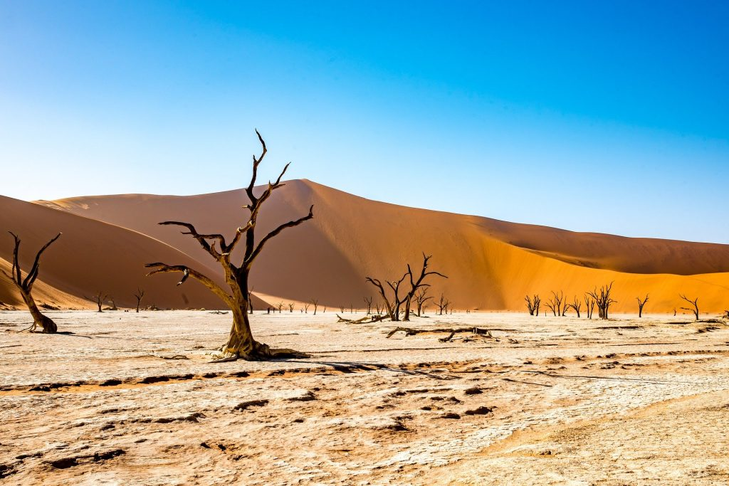 namibia southern african tours